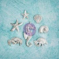 Prima Shabby Chic Treasures - Resin Sea Creatures  ^