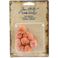 Tim Holtz Idea-ology - Mini Pumpkins  -