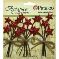Petaloo Botanica Collection - Glitter Star Pick