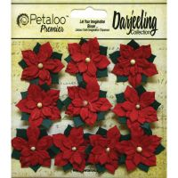 Petaloo Premier Darjeeling Collection - Red Poinsettias